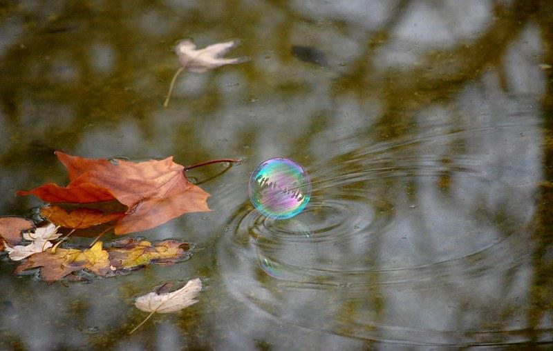 мыльный шар на воде